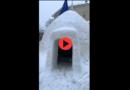 [FOTO&VIDEO] Spettacolare IGLOO costruito a Civitella Alfedena (AQ) nel Parco Nazionale – Meteo Abruzzo