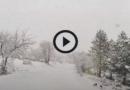[VIDEO] 19 Aprile 2021: SPETTACOLARE NEVICATA nel Parco Nazionale d'Abruzzo – Meteo Abruzzo
