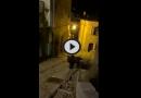 [VIDEO] A tu per tu con l'ORSO MARSICANO: molti avvistamenti nella zona del PNALM – Meteo Abruzzo